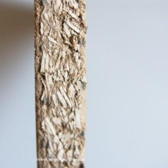Schleusner Putzträgerplatte 10 mm
